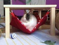 Hängemattengestell mit 1 Hängematte für Kaninchen