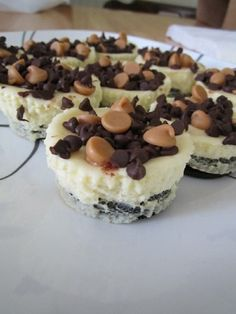 """OREO """"MINI"""" CHEESECAKES (WITH CHOC AND PB!) SO CUTE AND EASY TO DO!"""