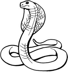 King Cobra Coloring page ✖️Adult Coloring Pages➕More Pins Like This At FOSTERGINGER @ Pinterest ➖