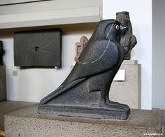 Faucon Horus
