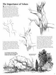 Image result for how to draw realistic trees step by step