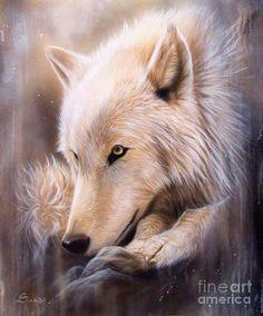 Wolf spirt