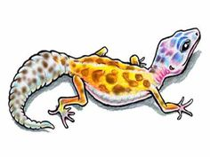 Google Image Result for http://www.tattoojockey.com/images/tattoo/lizard/big/15093x4_27.jpg