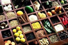 Image result for medicinal herbs