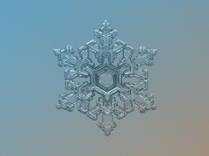 ☆ Natural Snowflake Macro: Ornate Pattern :¦: Photographer Alexey Kljatov ☆