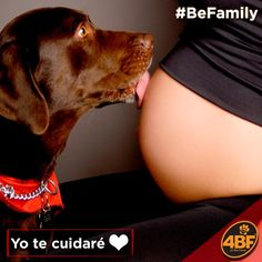Mi familia / My family 💑🐶❤️#BeFamily#familia#family#friends #loveforever#forever#babys#dogs #lovedogs#pregnant
