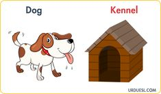 Animal And Their Homes With Pictures, Download Pdf & PPt Animal House Names, Alphabet Activities, Preschool Activities, Animals And Their Homes, House Clipart, Rabbit Life, List Of Animals, Free Preschool, Pet Names