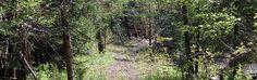 Sentiers de randonnée - Missisquoi Nord