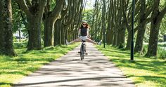 Ride a bike around Amsterdam