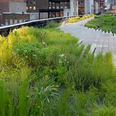 Highline New York, Piet Oudolf