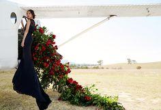 Nicole Warne in Dolce&Gabbana for Harper's Bazaar Malaysia June 2016  #GaryPepperGirl