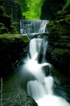 Finger Lakes...Great hiking trail and lots of lakes to swim in.