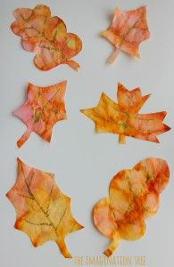 Coffee filter autumn leaves art activity for kids