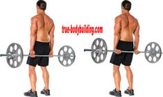 Full Biceps & Triceps Workout For A Bigger Arms - True Bodybuilding - Page 12 Forearm Workout, Triceps Workout, Big Biceps, Biceps And Triceps, Bigger Arms, Bodybuilding, Exercise, Ejercicio, Excercise
