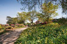 Image galleries of RHS Garden Wisley in Surrey / RHS Gardening