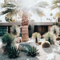 "975 Likes, 16 Comments - Garden Life (@gardenlife_syd) on Instagram: ""Mid century beauty with gardens to die for! #gardenlife #palmsprings #pinterestdreaming via…"" #DesertLandscape"