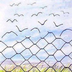 It's the eye of a caged mind that catches boundaries everywhere. Freedom is always an inside job.  (Stevie)