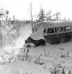 Pics For > Christopher Johnson Mccandless Dead Body