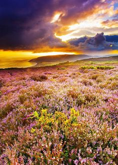 Stormy sunrise at Purlock Bay Exmoor | (10 Beautiful Photos)