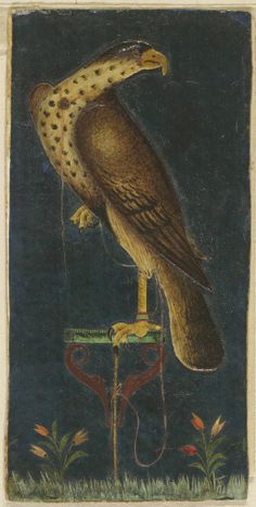 Falcon on a Perch: Islamic, 17th-19th century