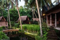 Paradise: Longtime Bali residents Canadian-born jewelry designer John Hardy and his American wife, Cynthia, bought eleven antique Javanese b...
