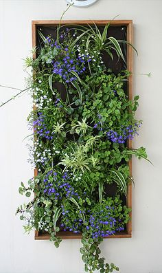 Coolaroo - Vertical Gardens