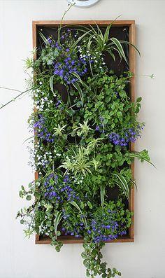 Coolaroo - Vertical Gardens