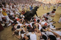 A cow jumps over a group of revelers in the bull ring, at the San Fermin Festival, in Pamplona, Spain, Wednesday, July 8, 2015. Revelers from around the world arrive in Pamplona every year to take part in some of the eight days of the running of the bulls. (AP Photo/Alvaro Barrientos)