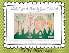 "Class Graph, ""Which Type of Plant is Your Favorite?"" (flower, fruit, vegetable)"