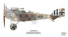 Aviatik D-1