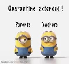 jokes minion hilarious so true - jokes minion ` jokes minions hilarious ` jokes minion hilarious so true Funny Minion Videos, Funny Minion Pictures, Minion Jokes, Minions Quotes, Jokes Quotes, The Minions, Funny Pictures With Quotes, Despicable Me Quotes, Minion Love Quotes