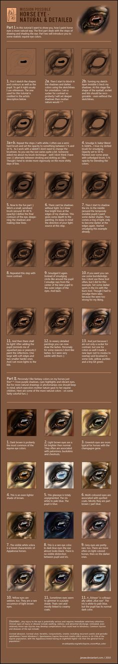 Tut - Natural Horse Eyes by *JanaW - An introduction to my my way of shading naturally looking horse eyes. Done in 26 simple pictures