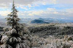 Picture from Zaarourieh, #lebanon Photo by Ali Youness #livelovelebanon #white #snow #winter #nature