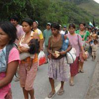 TIPNIS: Voces de mujeres ante nuevo intento de imponer la carretera de Ecofeminismo en SoundCloud
