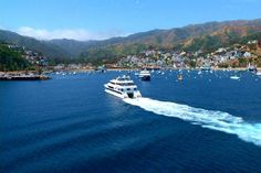 Travel to Catalina Island on the Express. Just 30 minutes from Long Beach, California  ;)