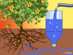 Bewatering van planten met een plastic fles. Boor gaatjes van circa 4 mm in de dop.