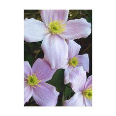 Floral Canvas Canvas Print
