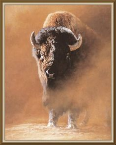 American Buffalo stirring up some dust! American Bison, American Indian Art, Native American Art, American Indians, Buffalo S, Buffalo Animal, Wildlife Quilts, Wildlife Art, Buffalo Pictures