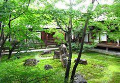 京都,建仁寺,中庭, Kyoto,Kenninji,Japanese garden,