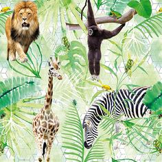Wanna Haves DI2001 Jungle Life