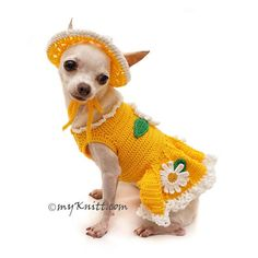Super Cute Yellow Dog Dress with Matching Sun Hat. Crocheted Flowers attached, very beautiful for casual party, fashion show, or even daily wear. Designed and handmade crocheted by Myknitt Designer Dog Clothes.  Please kindly check your pets measurements with my pattern size chart to make