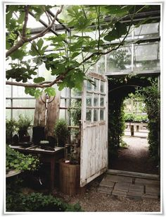 Oh, what I wouldnt give for access to a green house or small conservatory! Im knee deep in winter sprouting experiments. My little green b. Small Conservatory, Outdoor Spaces, Outdoor Living, Outdoor Seating, Magic Places, Patio Interior, Interior Design, Greenhouse Gardening, Greenhouse Ideas