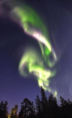 Nothern Lights- Lapland-Ylläs.
