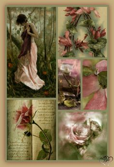 Beautiful Collage, Most Beautiful Flowers, Beautiful Things, Rose Bedroom, Pink Wedding Decorations, Pink Olive, Shades Of Peach, Color Collage, Color Schemes