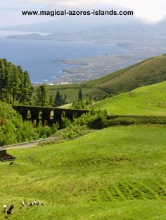 One of the countless beautiful views in Sao Miguel, Azores. The aqueduct pictured is quite interesting when viewed up close