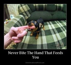 Never bite the hand that feeds you