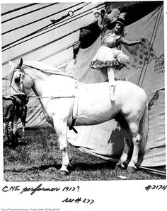 from the City of Toronto Archives. by polly Vintage Circus Photos, Vintage Pictures, Westminster, Toronto, Old Circus, Circo Vintage, Human Oddities, Circus Performers, Big Top