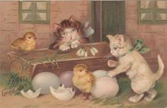 Embossed Easter Postcard - Kittens With Ribbons Watch Hatching Chicks Easter Cats, Cute Easter Bunny, Happy Easter, Vintage Cat, Vintage Easter, Vintage Greeting Cards, Vintage Postcards, Vintage Images, Kittens Playing