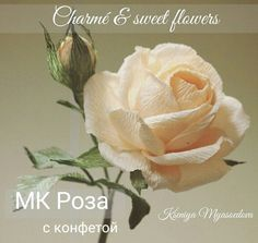 VK is the largest European social network with more than 100 million active users. Paper Flowers Craft, How To Make Paper Flowers, Crepe Paper Flowers, Flower Crafts, Fabric Flowers, Paper Crafts, How To Preserve Flowers, Giant Flowers, Fake Flowers