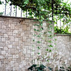 Pattern Set Eskitme Traverten Doğal Taş Karo Fileli Mozaik Classic Travertine